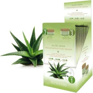 Aloe-vera-Web